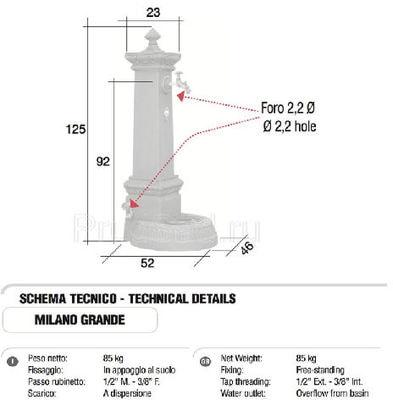 Водопроводная колонка чугунная MILANO GRANDE TREVI (фото, Колонка чугунная Monachella Grande Trevi)